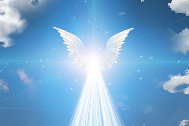 angel card reading, northcliff, randburg, sandton, johannesburg